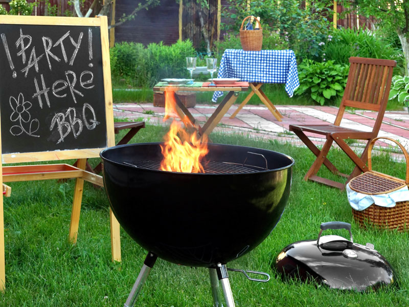 - Backyard Barbeque - 7 Ways To Keep Mosquitoes Away